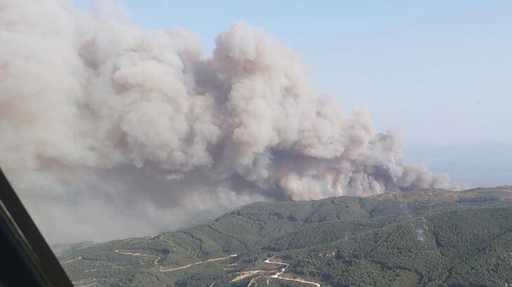 Söke'de ziraat alanındaki yangın ormana sıçradı