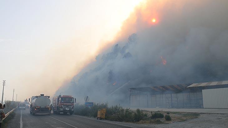 90 ev tahliye edildi! Aydın'da korkutan yangın