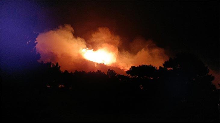 İzmir'de çıkan ve Balıkesir'e sıçrayan orman yangını kontrol altına alındı