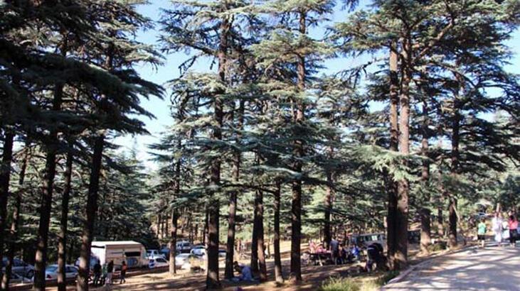 Kızıldağ Milli Parkı Isparta İlinde Nerededir, Nasıl Gidilir? Giriş Ücreti Ve Özellikleri