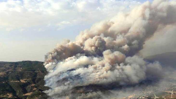 Bakan Pakdemirli: Aydın'daki yangın kontrol altında