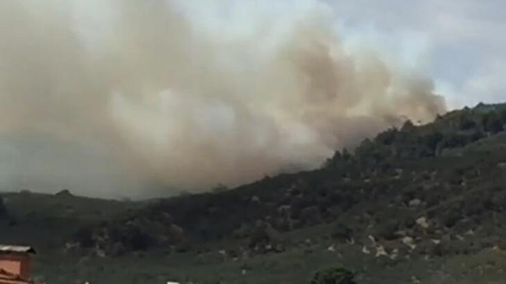 Bursa'da korkutan yangın! Havadan müdahale ediliyor