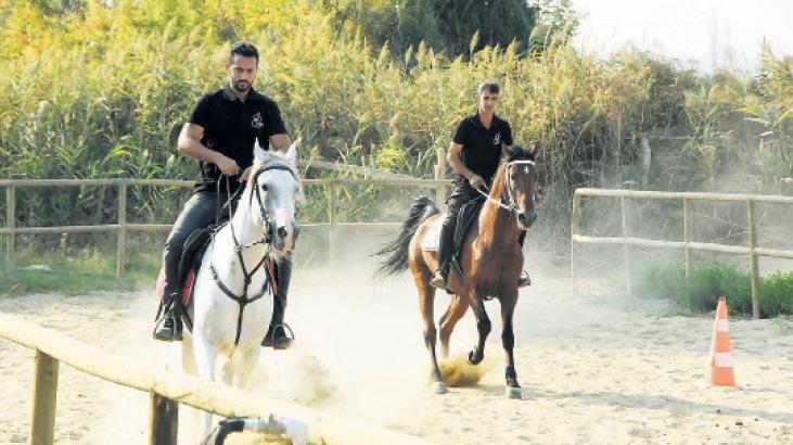 Eski yarış atları çocuklara yaradı