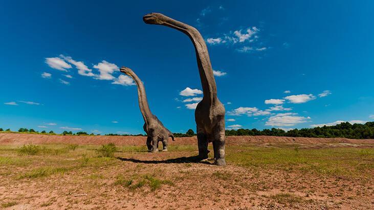 Dinozorları tanıyalım: Brachiosaur