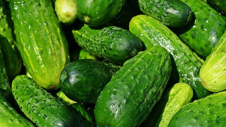 Salatalık Besin Değeri Nedir, Kaç Kalori İçerir? İçerisinde Bulunan Vitaminler Nelerdir?