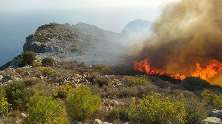 Mersin'de çıkan orman yangını kontrol altına alındı