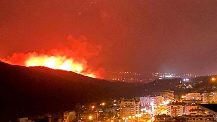 Hatay yangın sebebi nedir, neden çıktı? Hatay'daki yangını kim yaptı, ölen  yaralanan var mı? - Son Dakika Milliyet