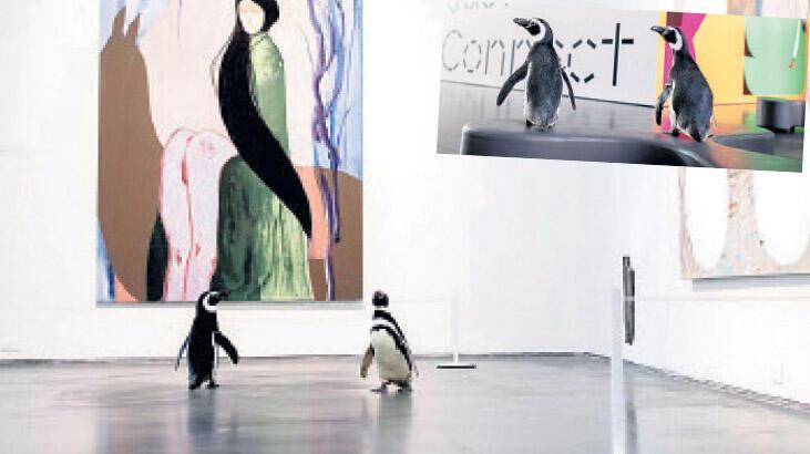 Penguenlerin müze turu sürüyor