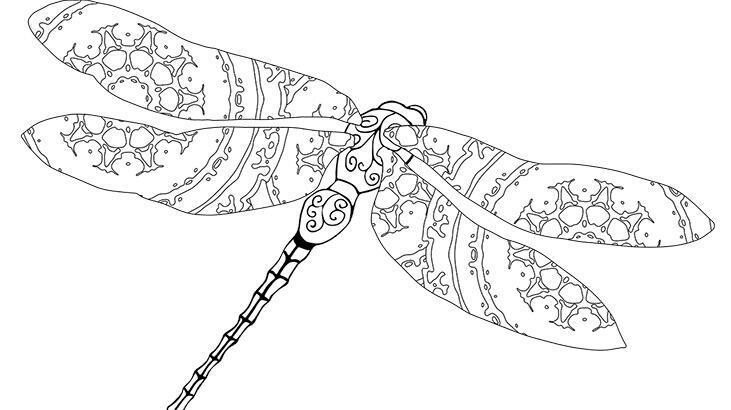 Yusufçuk boyama sayfası