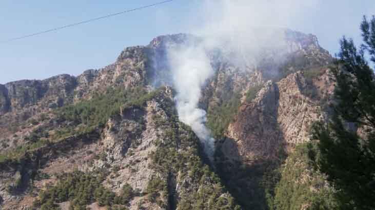 Kahramanmaraş'ta 1 hektar ormanlık alan yandı!