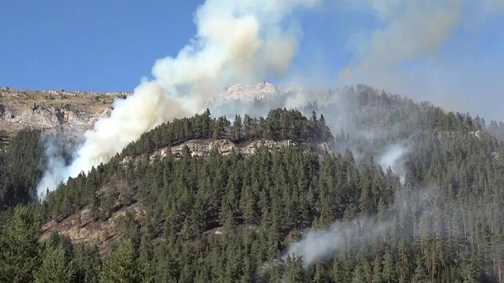 Kastamonu'da 'insan kastı' ile çıkan orman yangınları söndürüldü