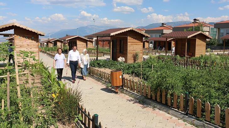 Hobi bahçesi satan ve pazarlayanlara hapis cezası geldi