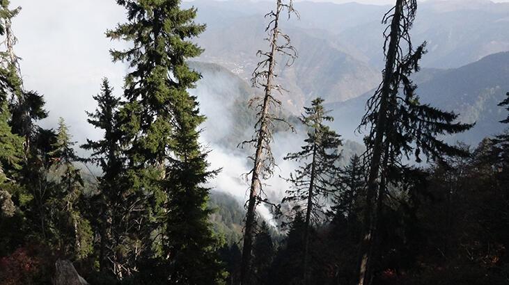 Gümüşhane'deki orman yangınına müdahale sürüyor