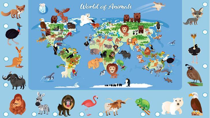 Hangi hayvan nerede yaşıyor?