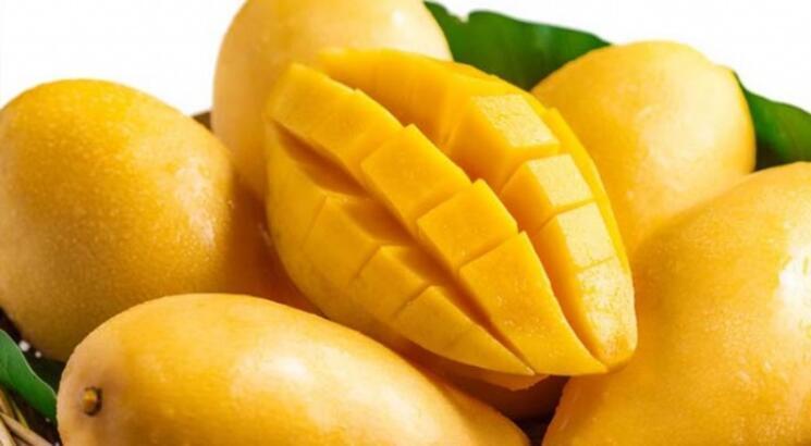Mangonun Faydaları Nelerdir? Mango Meyvesi Ve Çekirdeği Neye İyi Gelir?