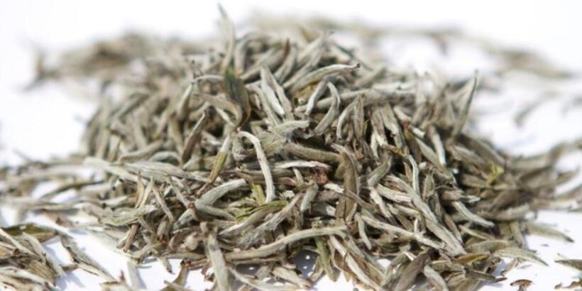 Beyaz Çayın Faydaları Nelerdir? Beyaz Çay İçmek Mideye Ve Gribe İyi Gelir Mi?