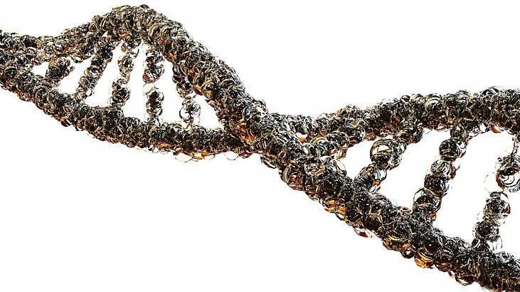 Genetik Ve Biyomühendislik Bölümü Nedir, Dersleri Nelerdir? Mezunu Ne İş Yapar?