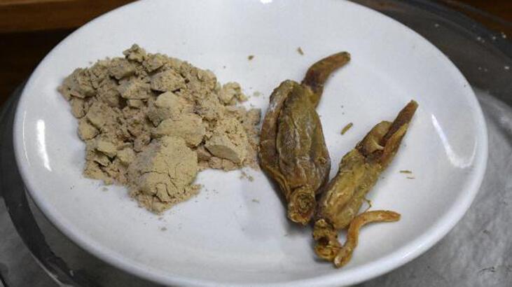 Bağışıklığı güçlendiren 'ginseng' kilosu 2 bin TL'den satılıyor