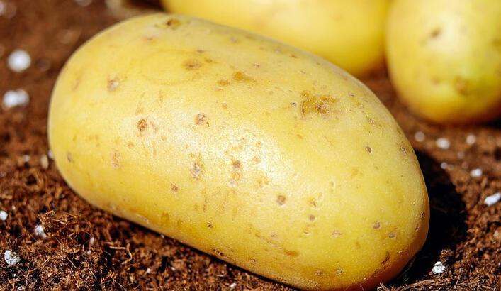 Patates Yemek