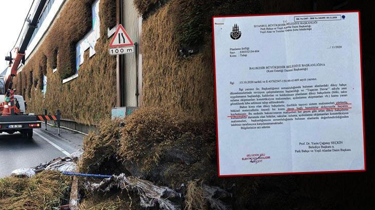 Balıkesir'in 'dikey bahçe' talebine İBB'den, 'stres nedeniyle hayatını kaybettiler' cevabı