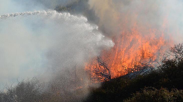 Antalya'da korkutan yangın! 5 dekar alan kül oldu