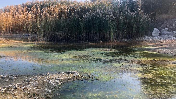 Eğirdir ve Beyşehir'de 'dip suyu' alarmı