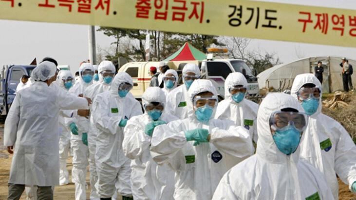 Güney Kore'de yeni kabus! 390 binden fazlası öldü