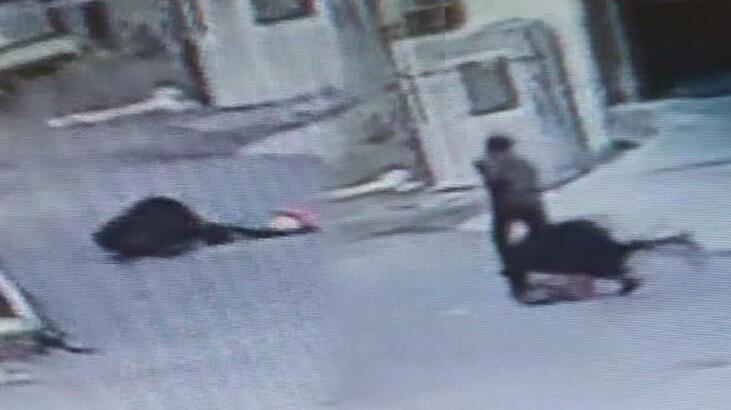 Gaziosmanpaşa'daki kapkaççı dehşeti! Kadını yerlerde sürükledi