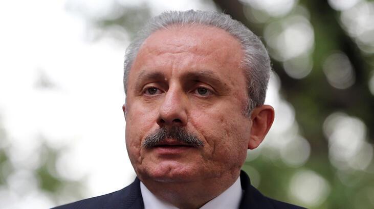 Meclis Başkanı Şentop: Ordumuz, milletimizin göz bebeğidir