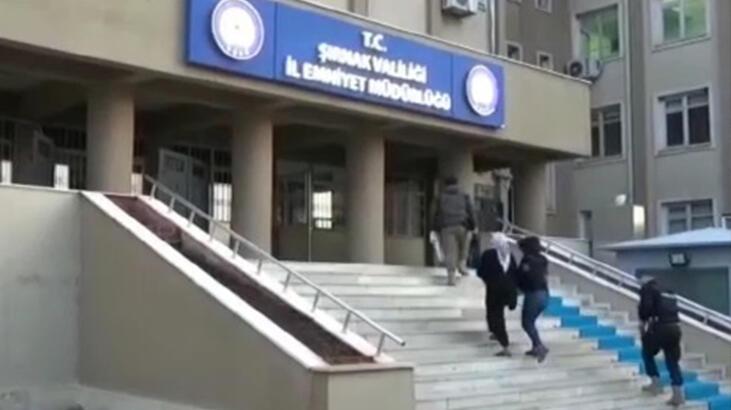 Son dakika... Şırnak'ta terör operasyonu! 20 kişi yakalandı