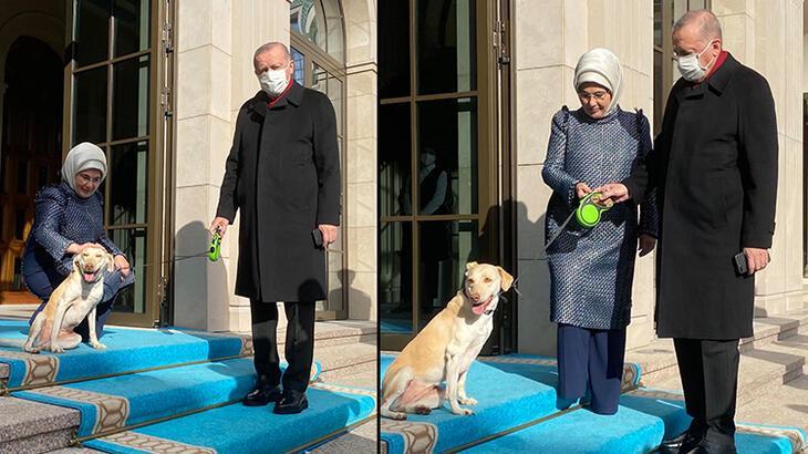 Emine Erdoğan, 'Leblebi' ile Cumhurbaşkanı Erdoğan'ı uğurladı