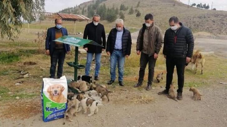 Kısıtlamada sokak hayvanları besleme yapıldı