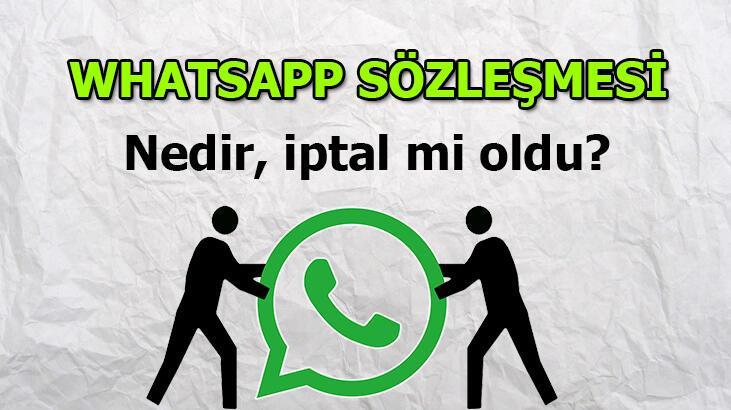 WhatsApp Sözleşmesi nedir? 'WhatsApp sözleşmesini kabul ettiğim nasıl anlaşılır, bana gelmedi?'