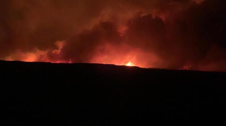 Eber Gölü'nde korkutan yangın! 8 bin dekar kamışlık alan zarar gördü