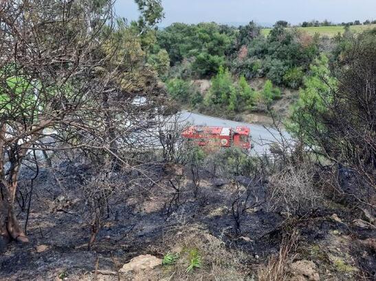 Manavgat'ta çalılık alan yangını
