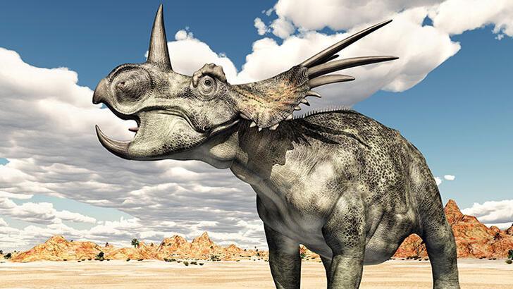 Dinozorları tanıyalım: Styracosaurus