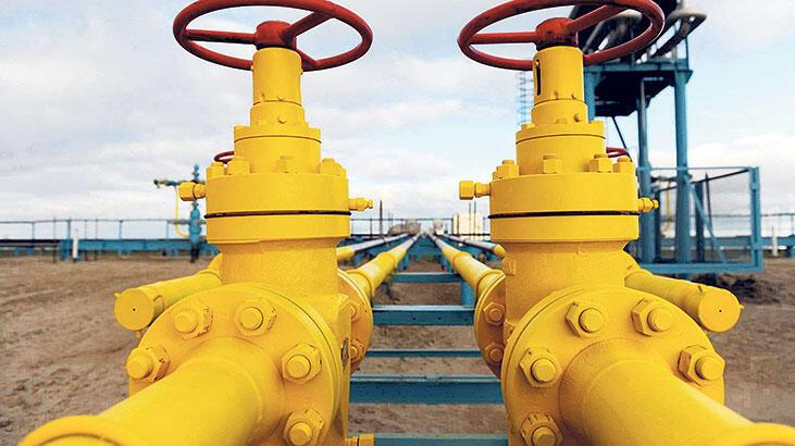 Doğal gazın yüzde 24'ü Azerbaycan'dan geldi