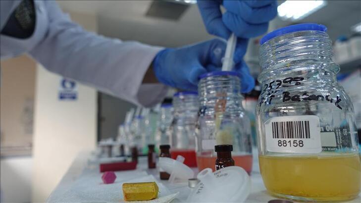 Kimya sektörünün ihracatında yüzde 12'lik büyüme bekleniyor