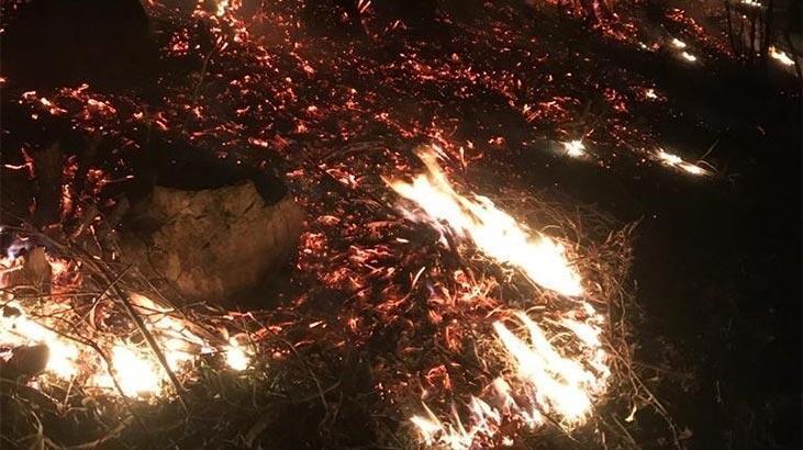 Örtü yangınını mahalleli söndürdü