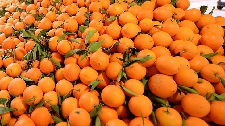 Portakal satışı yapılacak