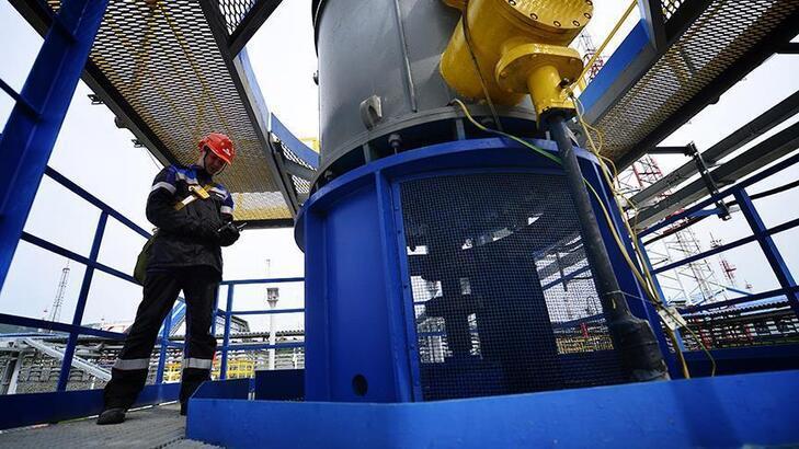 Rosneft'in net karı düştü