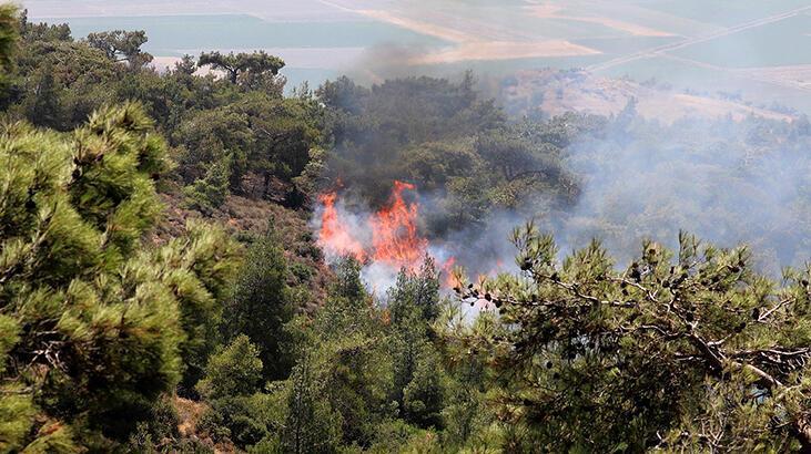 Son dakika! Teröristlere 'orman yakma' emri veren 'Demhat Sperti' MİT operasyonuyla etkisiz hale getirildi
