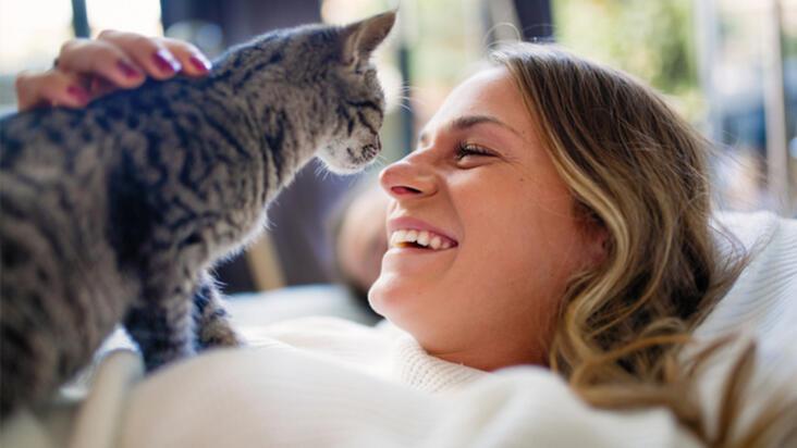 Kedi beslemek vücutta bu etkileri yaratıyor! Açıklandı...