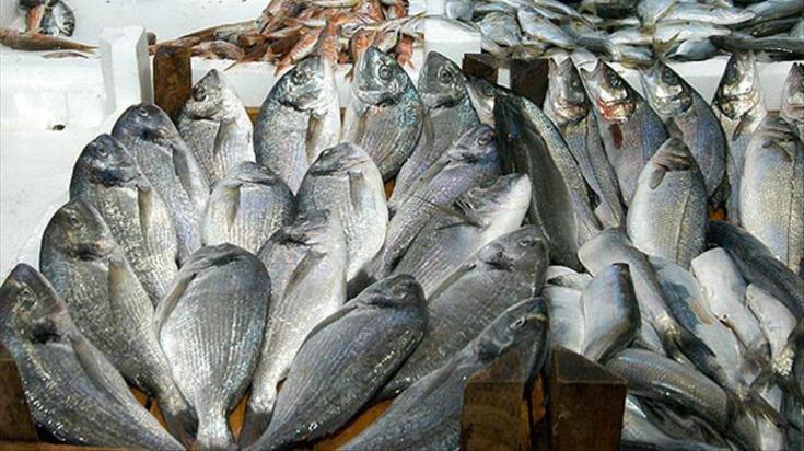 Çupra balığı nasıl pişirilir? Tavada ve ızgarada çupra balığı pişirme