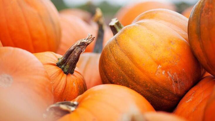 Sonbaharda hangi besinleri tüketmeliyiz?