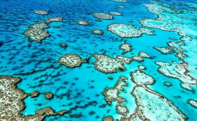 Büyük Set Resifi, Avustralya