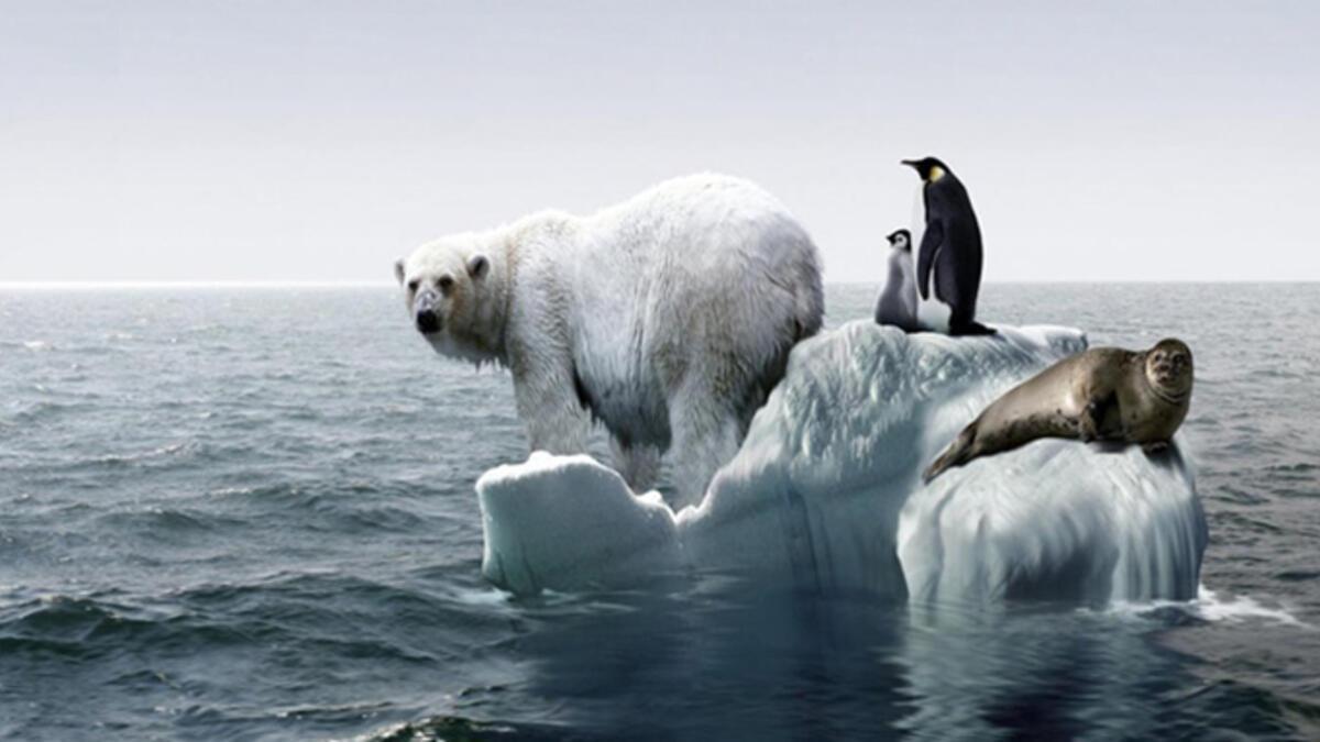 küresel ısınma sonuçları ile ilgili görsel sonucu