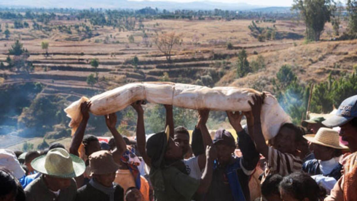 Madagaskar'da bir tuhaf festival: Famadihana - Tatil Seyahat Haberleri