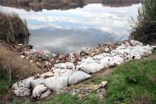 Adana çalkalanıyor! Peş peşe operasyonlarda şok manzara