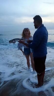 Son dakika: Alanya sahile vurdu! 'Siyanürden daha zehirli…'